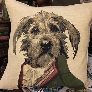 """""""Thierry Poncelet snaucher"""" Belgian Tapestry cushion"""