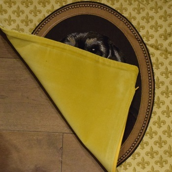 """Thierry Poncelet teckel yellow"" Belgian Tapestry cushion"