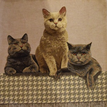 """Cat British shorthair"" Belgian tapestry cushion"