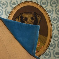 """Thierry Poncelet Labrador blue"" Belgian Tapestry cushion"