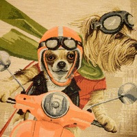 """""""Cairn terrier & chihuhua on vespa"""" Tapisserie Belge coussin"""