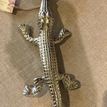 Magnifying glass crocodile