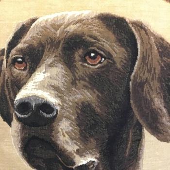 "Black labrador cushion green strips""Belgium Tapestry cushion"""