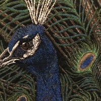 "peacock   ""Belgium Tapestry cushion"""