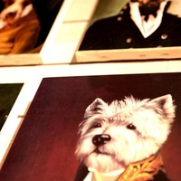 Interior decoration dressed up dog paintings - Huis de zomer- Bruges