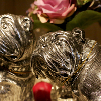 Interior decoration bulldog statue - Huis de zomer- Bruges